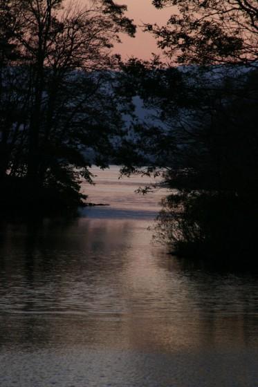 ひっそりと佇む湖水