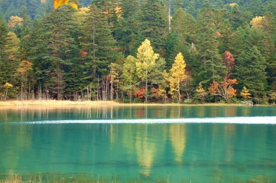 不思議な色を醸し出す秋のオンネトー
