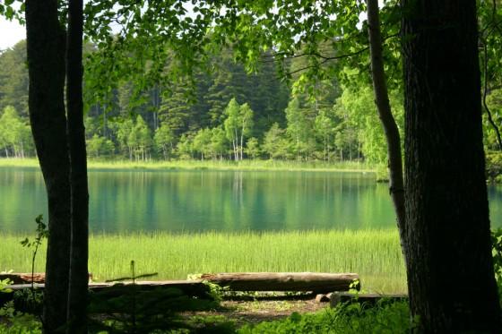 オンネトー1 南岸のキャンプ場から湖を望む