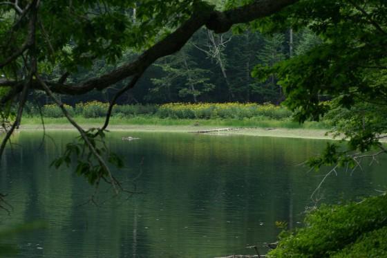 太郎湖3 さらに登山道を進むと湖畔に出る