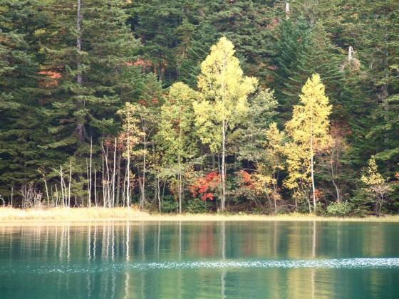 オンネトーの不思議な色の湖水